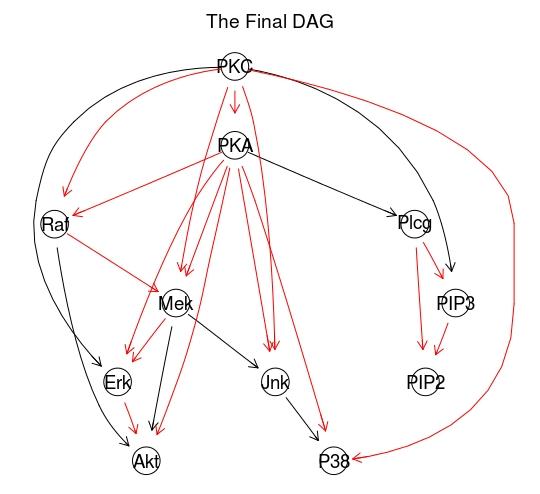 The_Final_DAG.jpeg